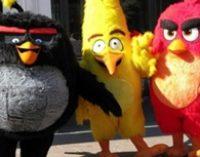 Разработчик Angry Birds объявил о планах по выходу на биржу