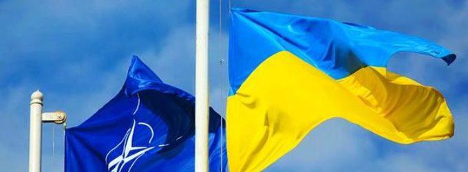 Процесс интеграции Украины в НАТО должен быть лишен спекуляций относительно конкретной даты вступления – Фриз