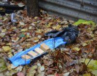 На Луганщине задержали сообщника боевиков со взрывчаткой
