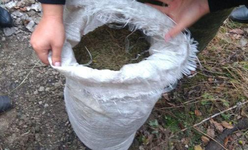 На Донетчине изъяли почти 10 кг наркотического вещества