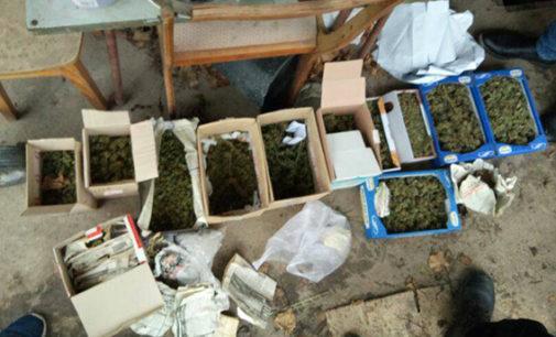 На Херсонщине изъяли наркотиков на сумму 300 тысяч гривен