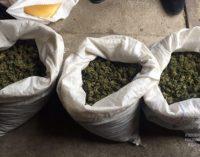 На Днепропетровщине изъяли наркотиков на 3 млн гривен