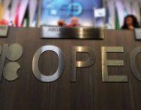Украина ратифицировала соглашение с фондом ОПЕК о защите инвестиций