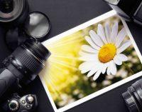 В сети показали самые старые в мире цветные снимки