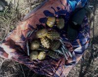 На Запорожье обнаружили тайник с гранатами