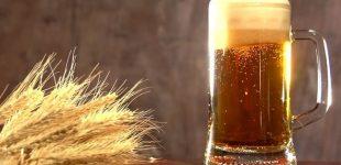 Домыслы-страшилки, или 12 нелепых мифов о пиве