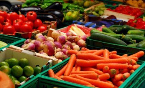 Ученые доказали пользу растительной пищи для сердца