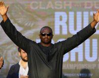Уайт: «Уайлдер ничтожно спрятался за спинами WBC»